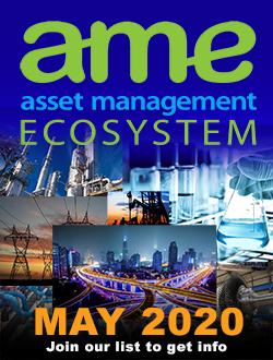 Asset Ecosystem
